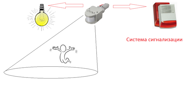 Датчик движения для включения света: виды, как подключить